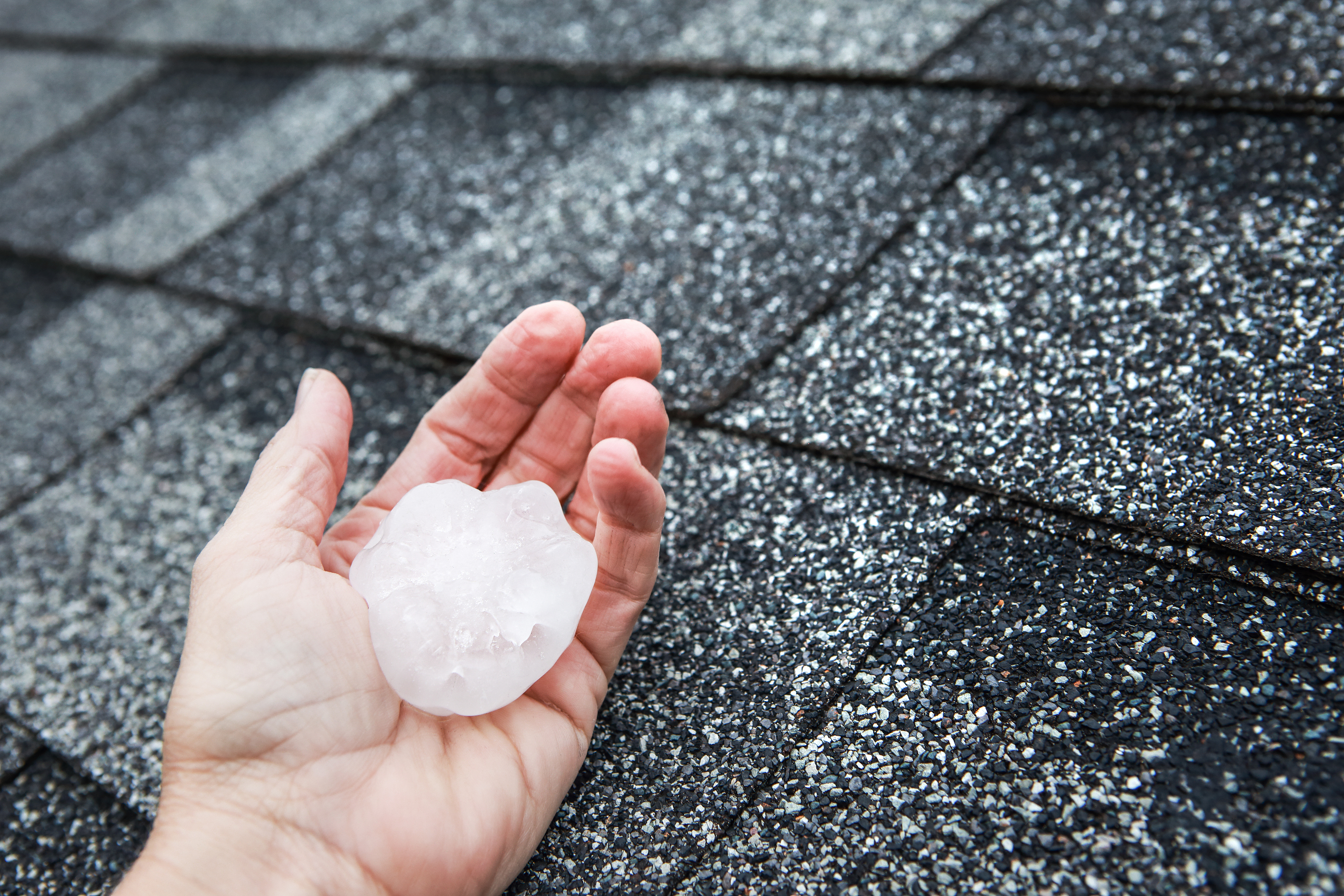 Spring Tune Up For Your Roof: What You Need To Know